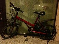 もうすぐ、我が家に電動自転車がやってきます。うれしいな。